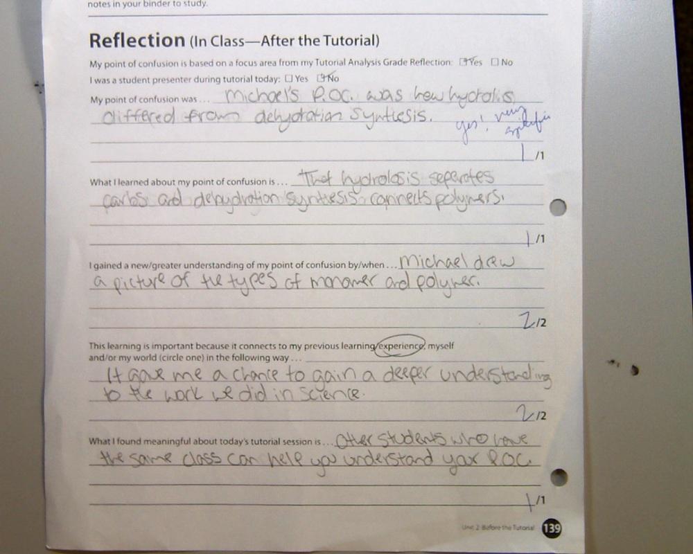 avid reflection essay